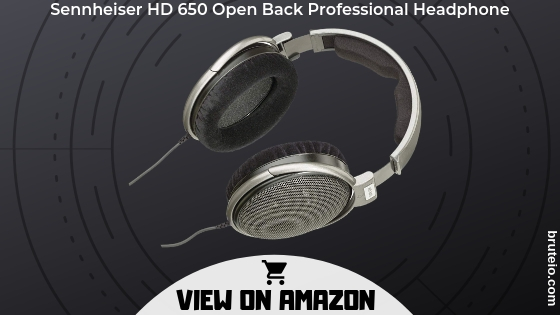 Sennheisers HD 650 Open Back Professional Headphone